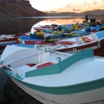 The flotilla tied up at our first camp, just fifty yards downstream from the load-in point. Early morning of launch day, getting set to head down the Canyon.